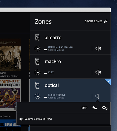 Audio zone speaker icon meanings? - Roon Software - Roon