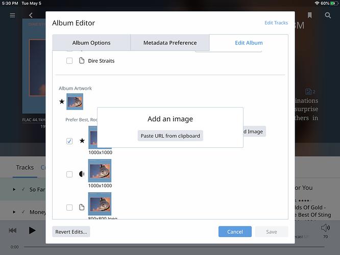 iPad add Album Cover
