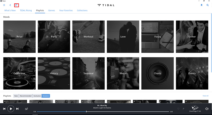 TIDAL Playlists take a long time to sync in Roon - Support