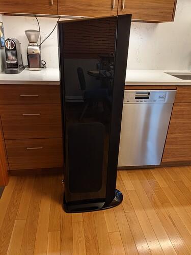 GoldenEar Triton One.R - Speaker 1 Left Side