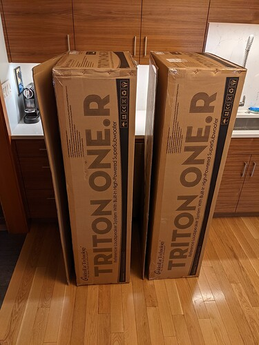GoldenEar Triton One.R Shipping Boxes