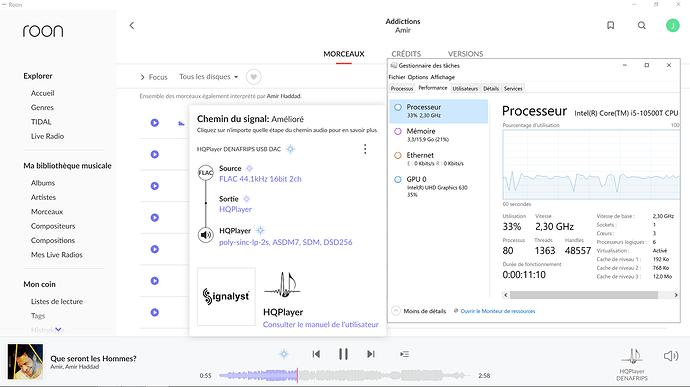 Capture d'écran (Chemin Signal Roon-HQplayer et charge Processeur en DSD 256)