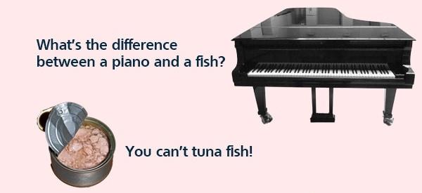 piano&fish